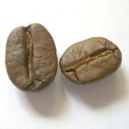 Kolumbien Excelso (Arabica) 100g