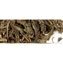 "Grüner Tee ""Zimtkuss"""